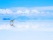 Salar d'Uyuni et Vicuna