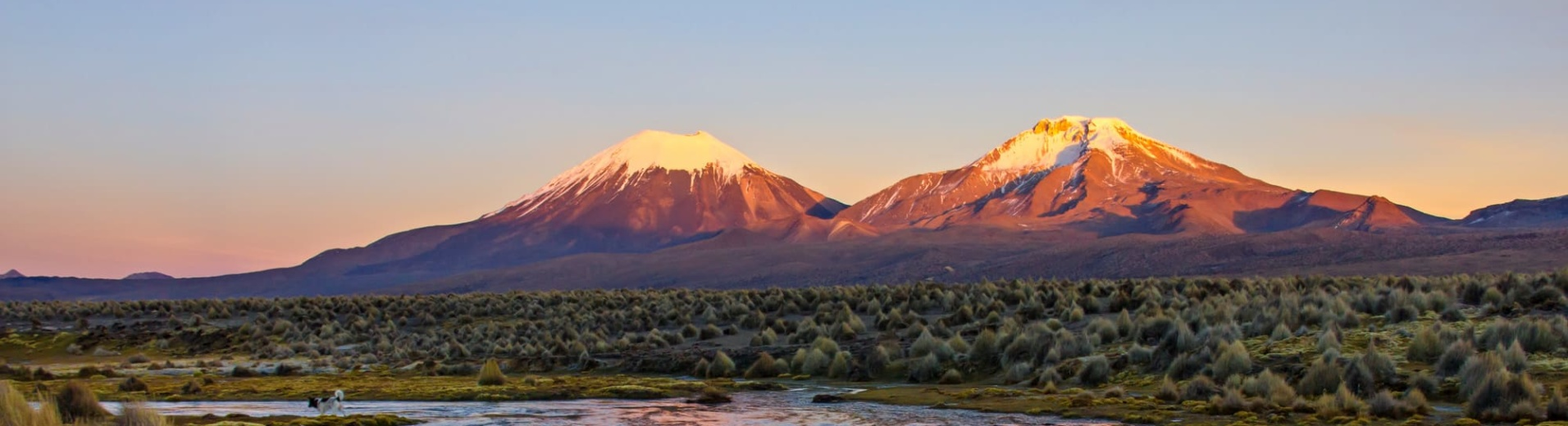 visiter-sajama-bolivie