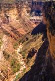 Canyon Toro Toro